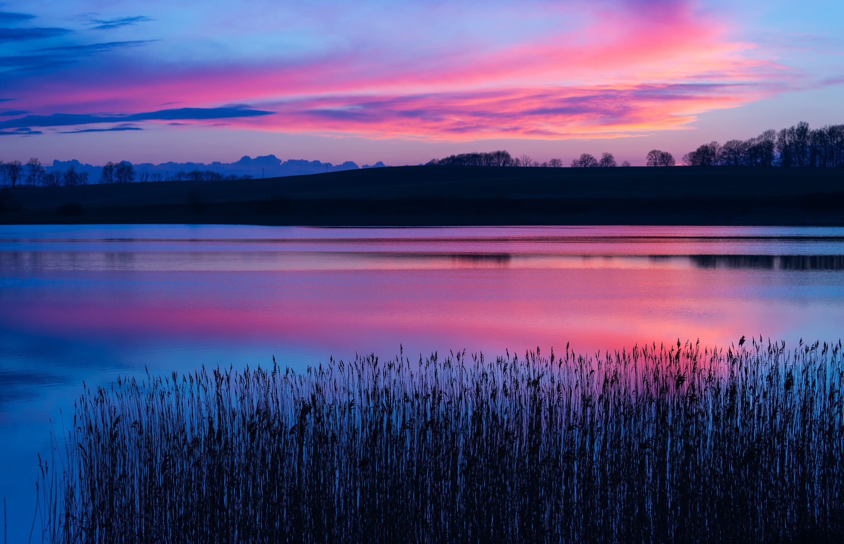 Beautiful sunset over calm lake. Colourful and vibrant landscape of lake shore with reeds.